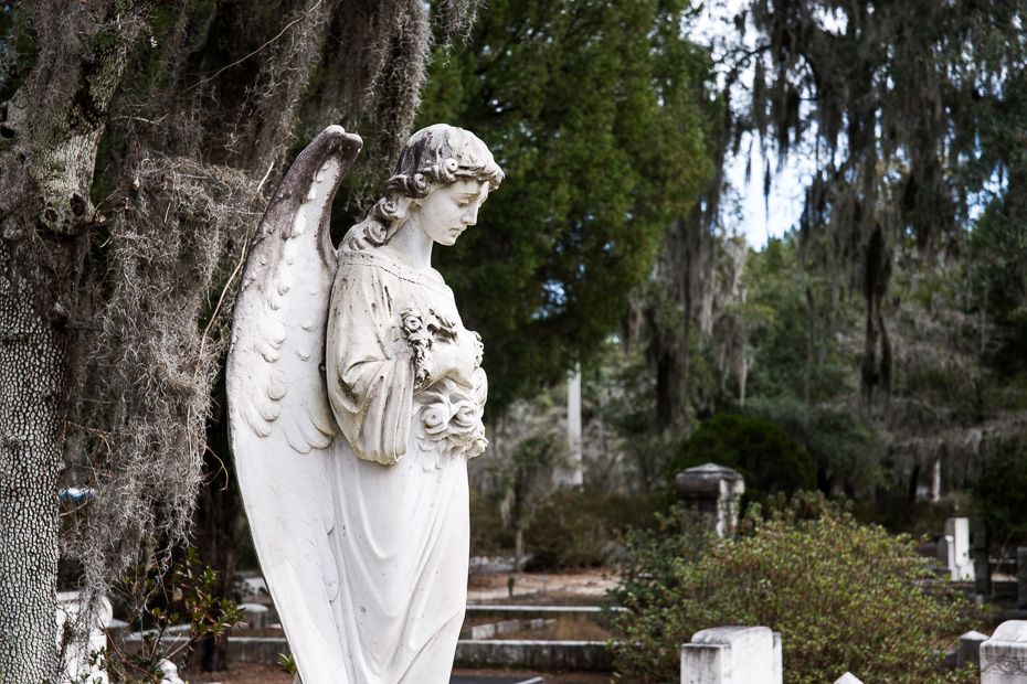 Savanna georgia Bonaventure cemetery gone with the wind whovian weeping angel