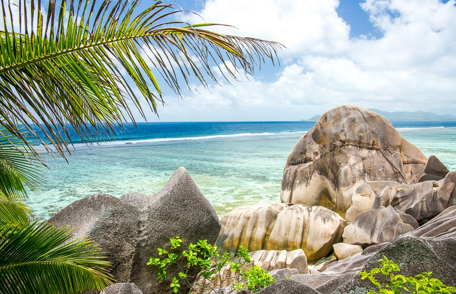 beach vacation diving seychelles dream come true