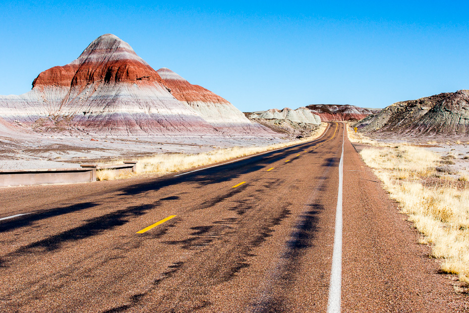 painted desert petrified forest national park america the beautiful pass road trip usa