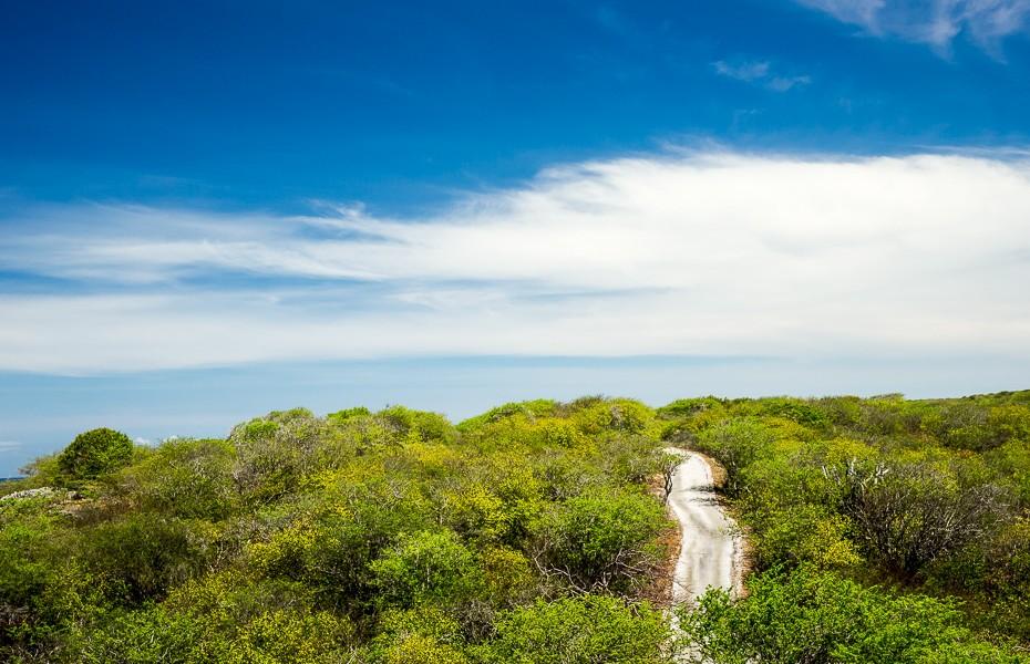 christoffel park nature sheteboka curacao