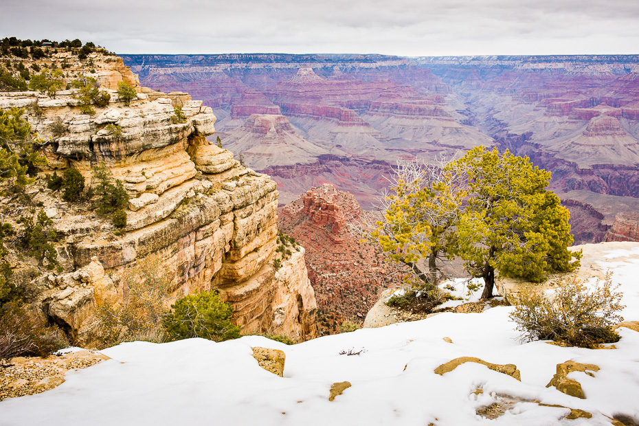 grand canyon usa roadtrip arizona america