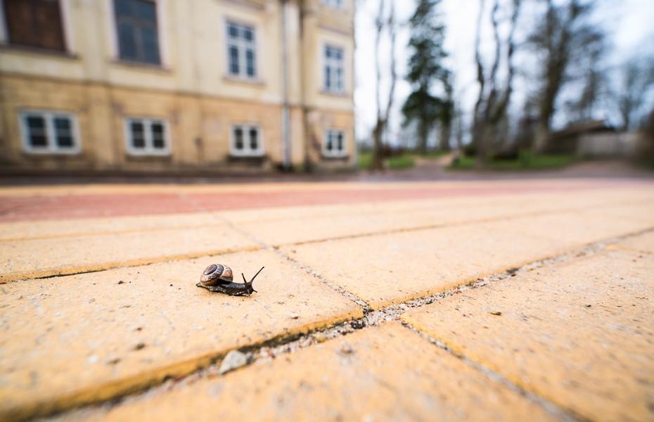 old town kuldiga
