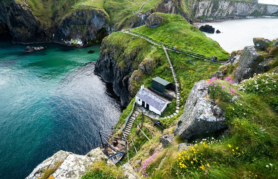 nature at carrick a rede ropeway bridge