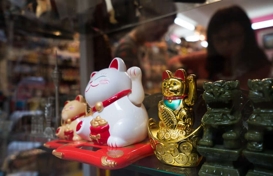 the chinese good luck cat