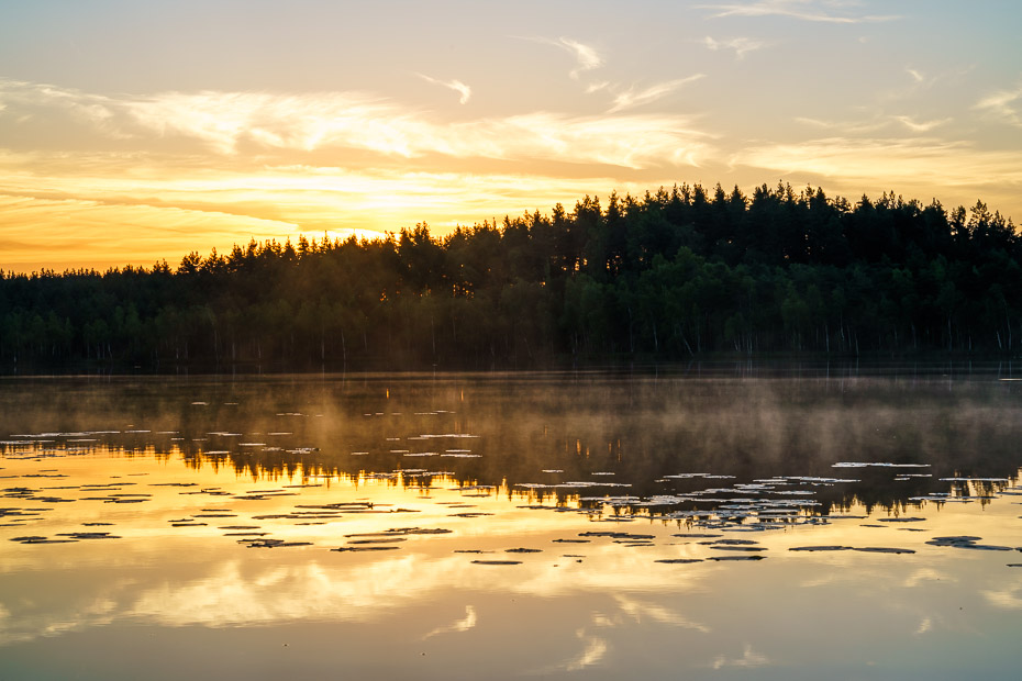 sunrise in tirumnieki lake at bog