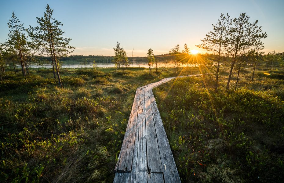 tirumnieki path in sunrise