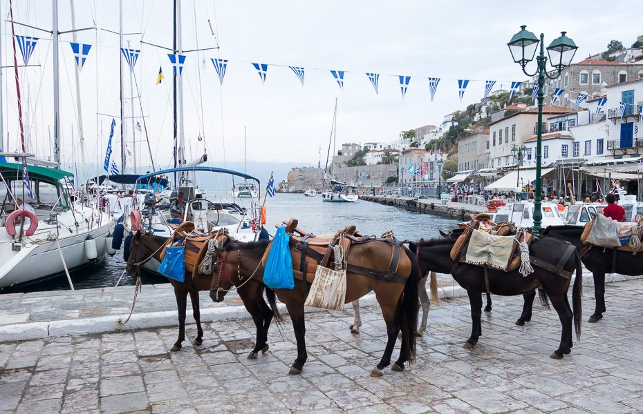 Donkey rides in Greek islands