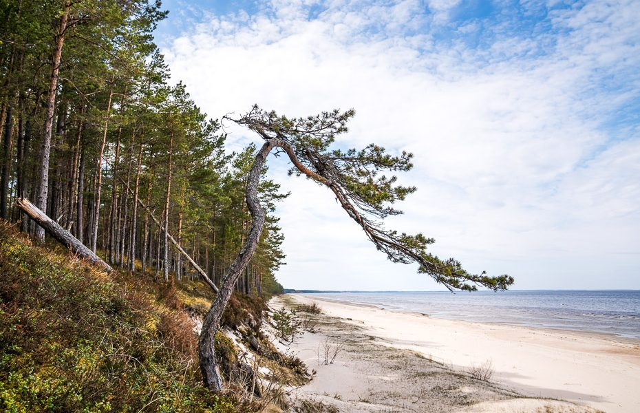 beach latvia lacupite