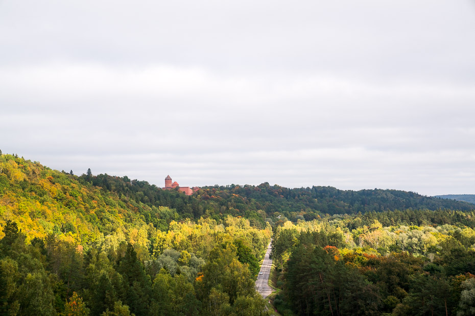 view from cablecar zipline zerglis sigulda bungee jump