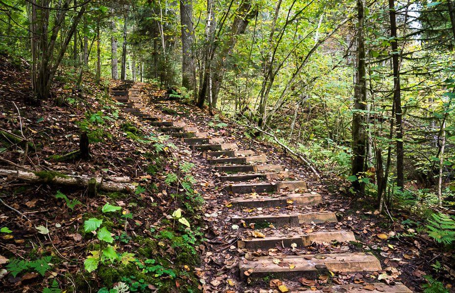 vikmeste hiking trail sigulda