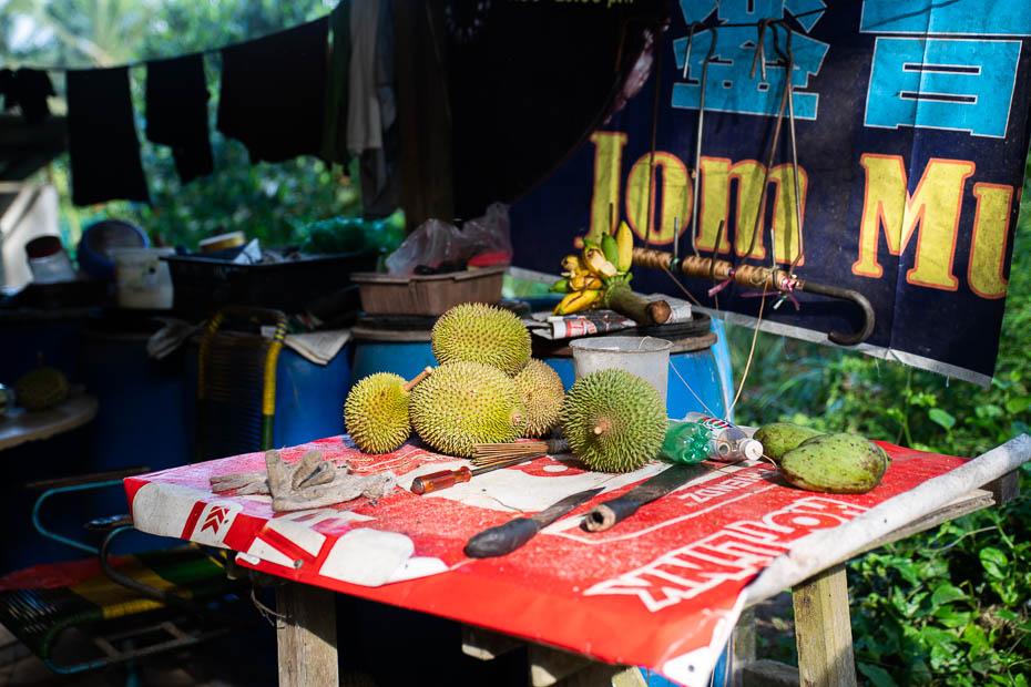 european tasting durians