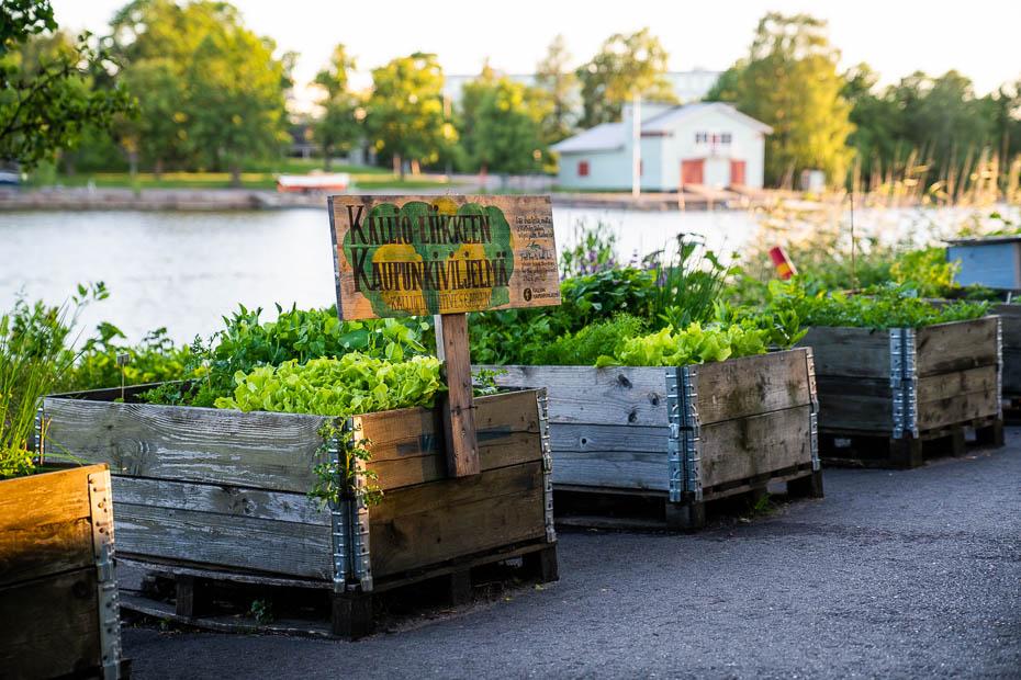 public communal gardens in Helsinki