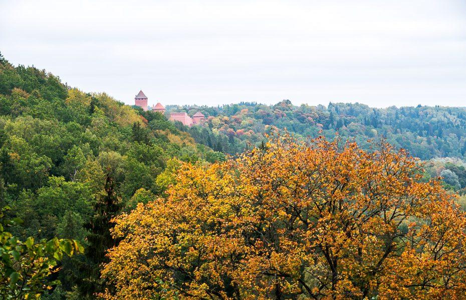 Most popular destination in Latvia for Autumn foliage Sigulda